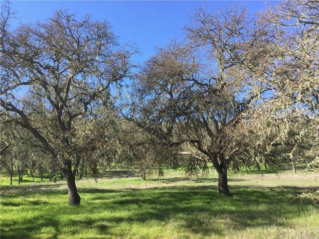 0 Spring Creek Way, Templeton, CA 93465 (#NS20016408) :: Sperry Residential Group