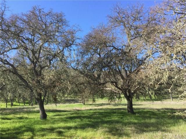 0 Spring Creek Way, Templeton, CA 93465 (#NS20016408) :: Z Team OC Real Estate