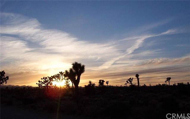 3682 Lexington, Yucca Valley, CA  (#JT20016441) :: Cal American Realty