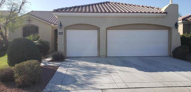 80101 Camino Santa Elise, Indio, CA 92203 (#219037478DA) :: Case Realty Group