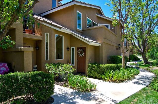 1117 S Positano Avenue, Anaheim Hills, CA 92808 (#PW20016475) :: Sperry Residential Group