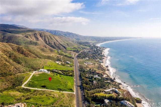 32401 Pacific Coast Highway, Malibu, CA 90265 (#SB20016472) :: The Parsons Team