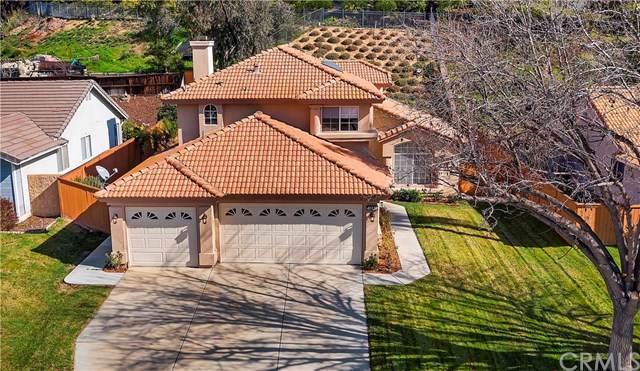 41120 Vintage Circle, Temecula, CA 92591 (#SW20017210) :: Allison James Estates and Homes