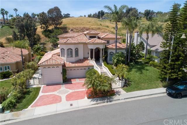 30081 Saddleridge Drive, San Juan Capistrano, CA 92675 (#PW20016999) :: RE/MAX Innovations -The Wilson Group