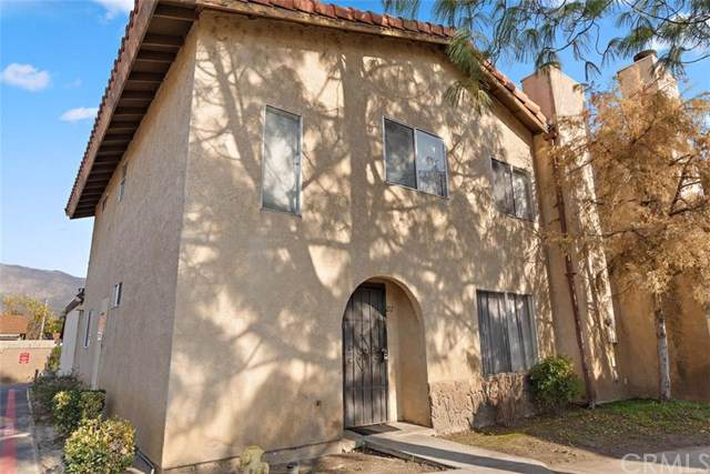 217 Tiger Lane, San Jacinto, CA 92583 (#TR20014043) :: Re/Max Top Producers
