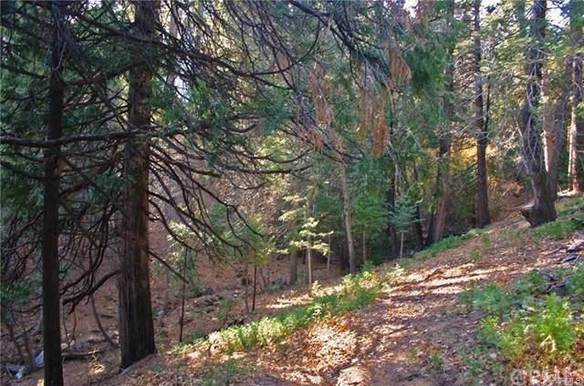 0 Meadow Lane, Cedar Glen, CA  (#IV20017644) :: Twiss Realty