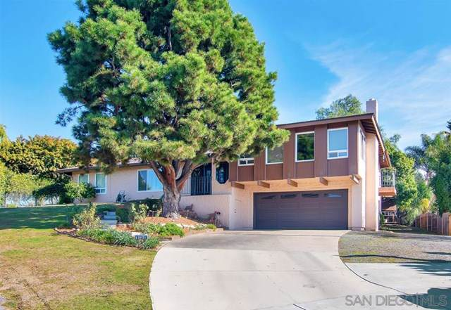 373 Coachwood St, El Cajon, CA 92019 (#200004256) :: Bob Kelly Team