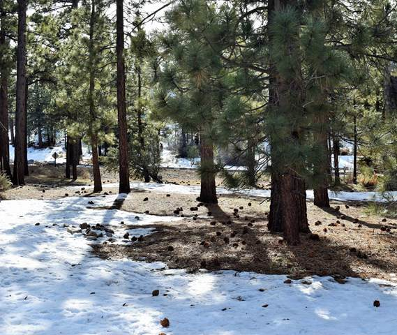 0 Country Club Boulevard, BBC - Big Bear City, CA 92314 (#219037653PS) :: The Marelly Group | Compass