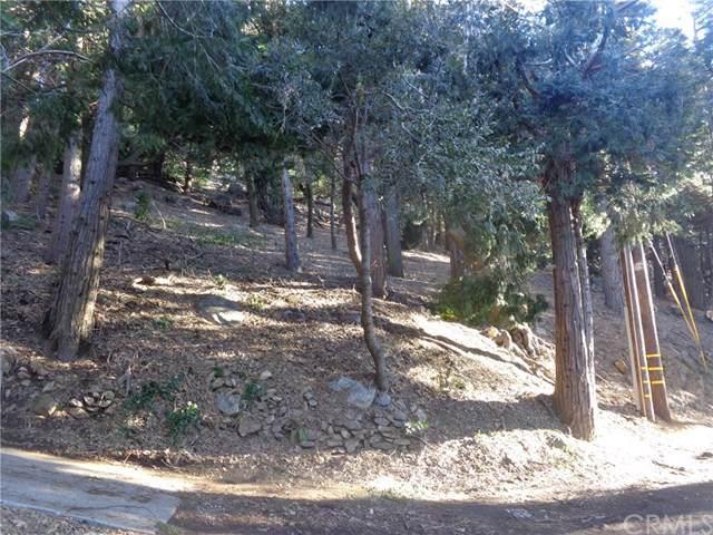 0 Peak Circle, Cedarpines Park, CA 92322 (#EV20017351) :: The Marelly Group | Compass