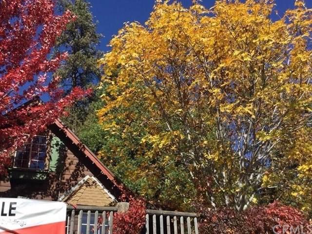 24048 Lake Drive - Photo 1
