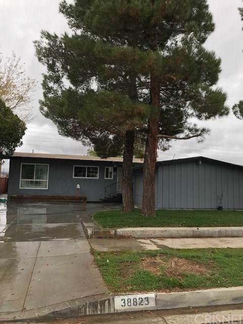 38823 Carolside Avenue, Palmdale, CA 93550 (#SR20018905) :: The Miller Group