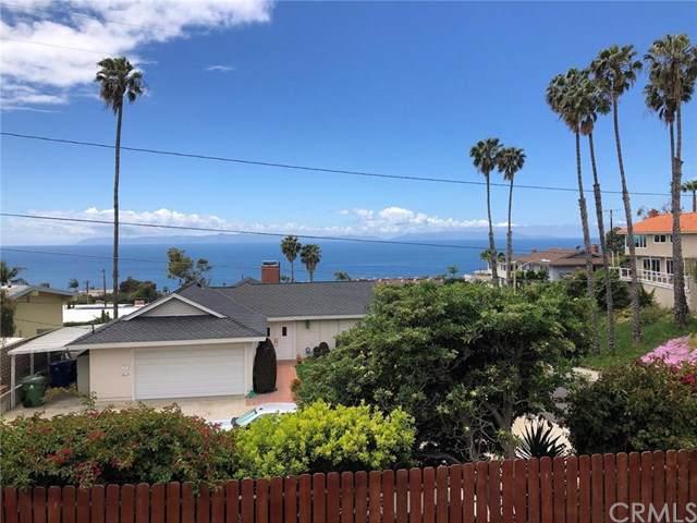 2193 Grenadier Drive, San Pedro, CA 90732 (#SB20016961) :: Twiss Realty