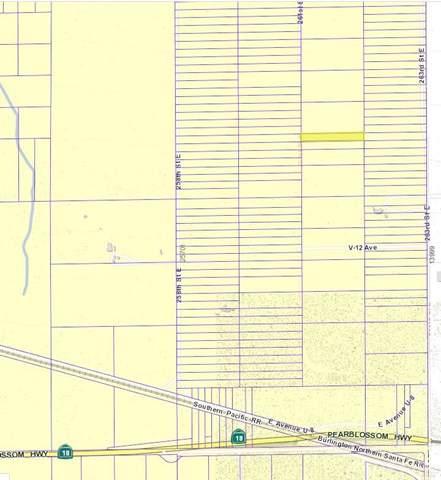 26100 Vac/Vic Avenue V6/258 Ste, Llano, CA 93544 (#SR20019687) :: eXp Realty of California Inc.