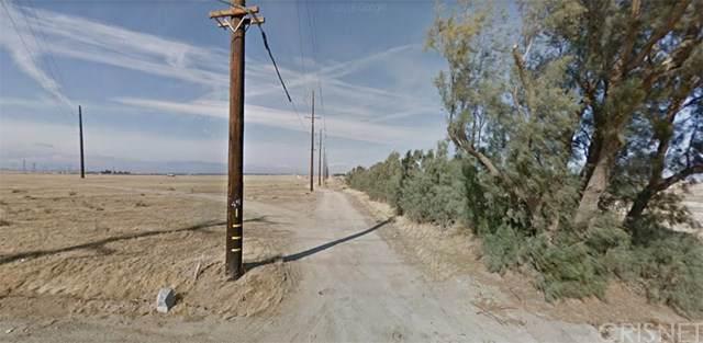 9600 Vac/Ave I9/Vic 96 Plw, Lancaster, CA 93536 (#SR20019885) :: RE/MAX Masters