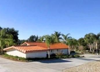 1111 Amethyst Avenue, Mentone, CA 92359 (#EV20012800) :: Crudo & Associates