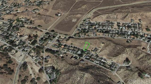 1 Driver Ave & Alpine Walk, Val Verde, CA 91384 (#SR20020280) :: The Najar Group