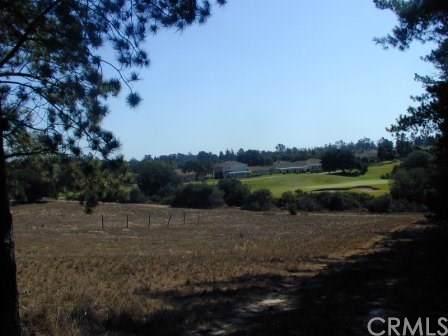 1205 Pomeroy Road, Arroyo Grande, CA 93420 (#PI20020632) :: Realty ONE Group Empire