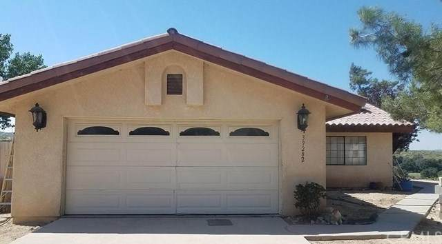 39282 Opalocka Road, Boulevard, CA 91905 (MLS #PW20021625) :: Desert Area Homes For Sale