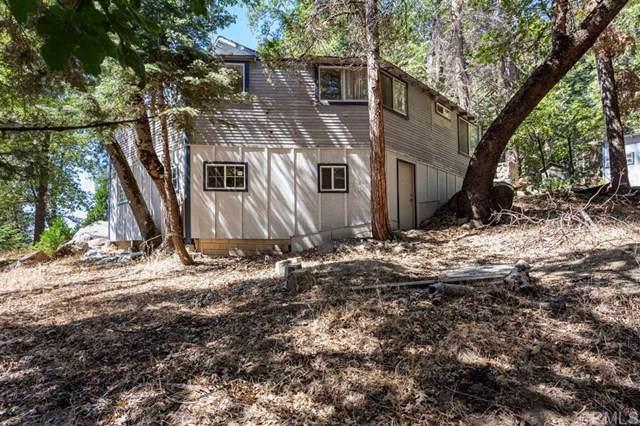 21929 Crestline Rd, Palomar Mountain, CA 92060 (#200004989) :: Cal American Realty