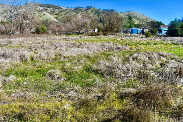 2830 10th Street, Clearlake, CA 95422 (#LC20022511) :: The Laffins Real Estate Team