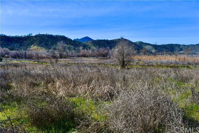 2831 10th Street, Clearlake, CA 95422 (#LC20022604) :: Cal American Realty