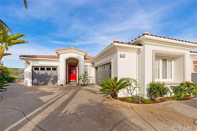 33602 Holtz Hill Rd, Dana Point, CA 92629 (#PW20021353) :: Allison James Estates and Homes