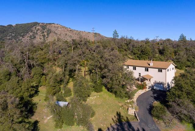 1295 Banner Rd, Julian, CA 92036 (#200005178) :: Realty ONE Group Empire