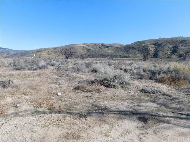 0 Lebec Road, Lebec, CA 93243 (#SR20023220) :: TeamRobinson | RE/MAX One
