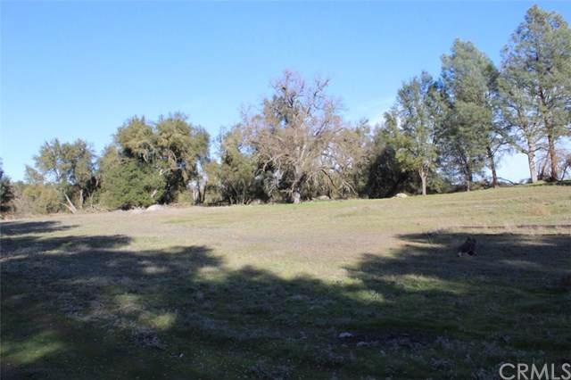 3891 Ben Hur Road, Mariposa, CA 95338 (#FR20023852) :: Allison James Estates and Homes