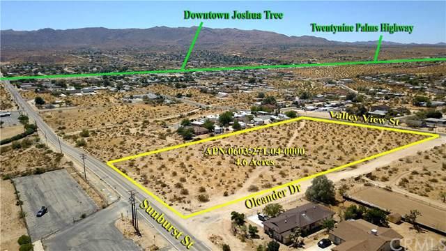 6086 Sunburst Avenue, Joshua Tree, CA 92252 (#EV20023962) :: The Laffins Real Estate Team