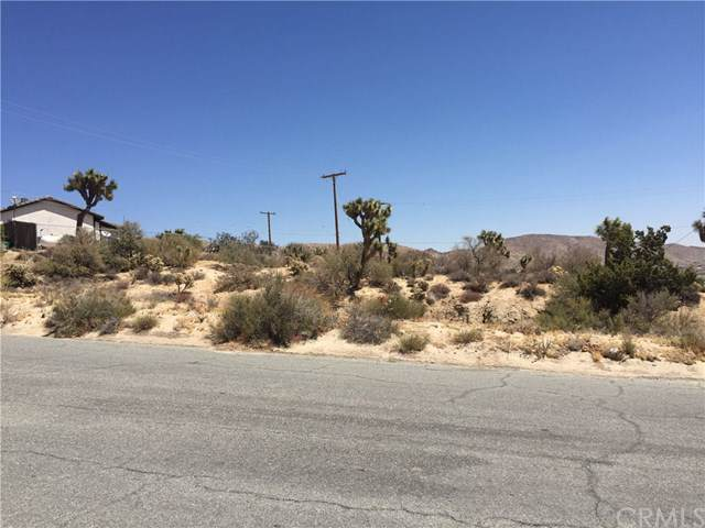 0 Shafter Avenue, Yucca Valley, CA 92284 (#IV20024493) :: RE/MAX Masters