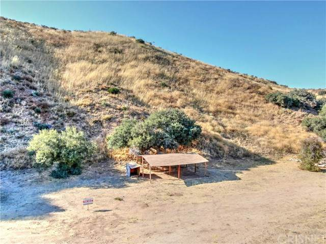 0 Vac/Silver Canyon Drt /Vic Oak Street, Agua Dulce, CA 91350 (#SR20024036) :: The Ashley Cooper Team
