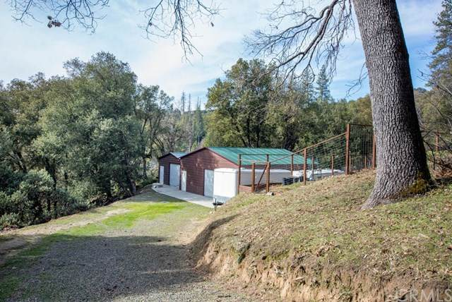 2323 Harris Road, Mariposa, CA 95338 (#FR20025512) :: Allison James Estates and Homes