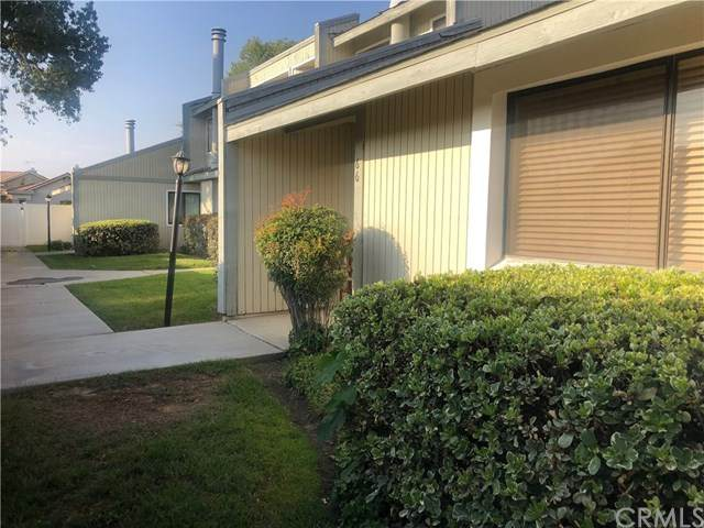 1965 Coulston Street #66, Loma Linda, CA 92354 (#IV20025733) :: The Bashe Team
