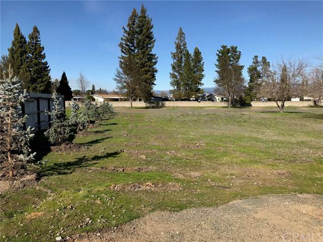 20 Queen Ann Way, Lakeport, CA 95453 (#LC20026153) :: RE/MAX Masters