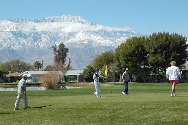16831 Sunrise Road, Desert Hot Springs, CA 92241 (#219038351PS) :: Twiss Realty