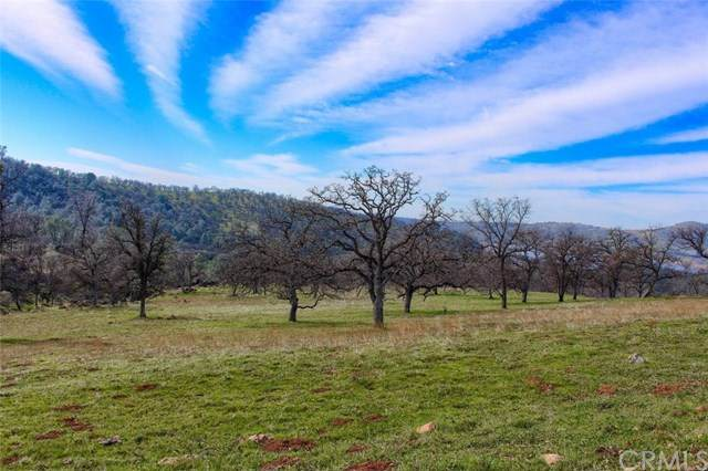 0-160 AC Cotton Creek Road, Mariposa, CA 95338 (#FR20026448) :: The Miller Group