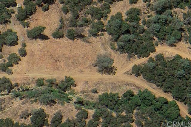 5349 Highway 49 N, Mariposa, CA 95338 (#MP20026989) :: Allison James Estates and Homes