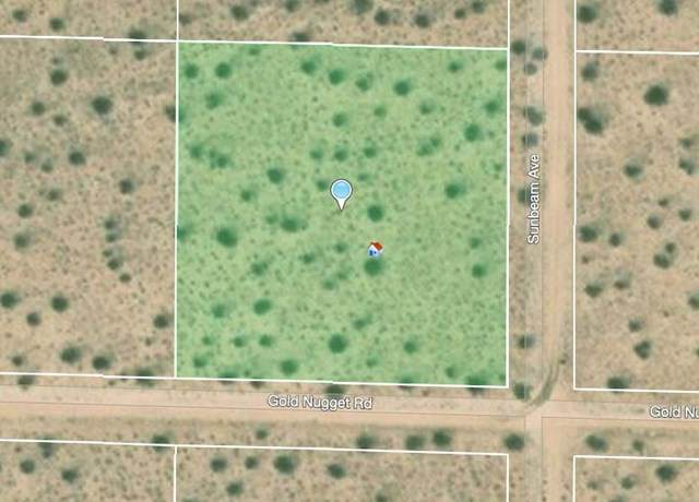 66 Sunbeam Avenue, Joshua Tree, CA 92252 (#219038427PS) :: Z Team OC Real Estate