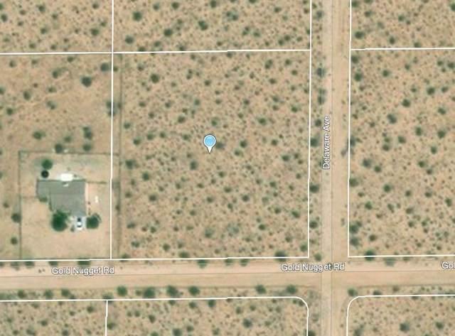 68 Gold Nugget Road, Joshua Tree, CA 92252 (#219038439PS) :: Z Team OC Real Estate