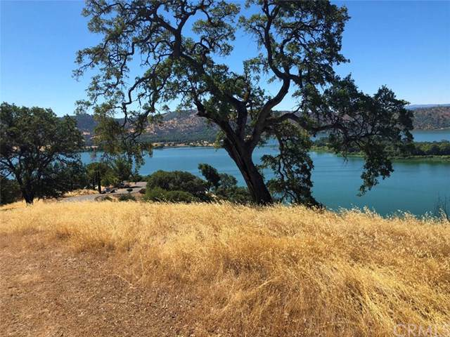 12272 Lakeview Drive, Clearlake Oaks, CA 95423 (#PW20027489) :: Twiss Realty