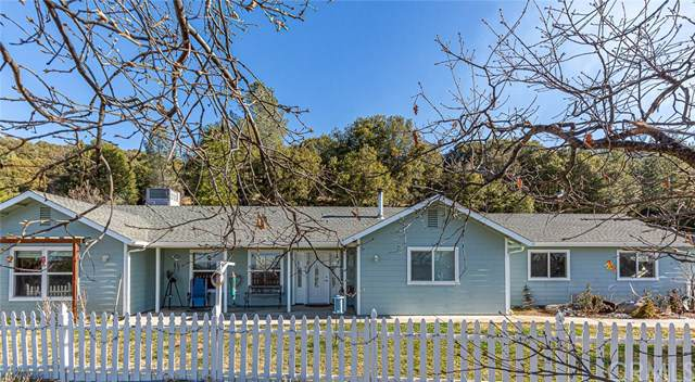 2950 E East Westfall Road, Mariposa, CA 95338 (#MP20020633) :: Allison James Estates and Homes