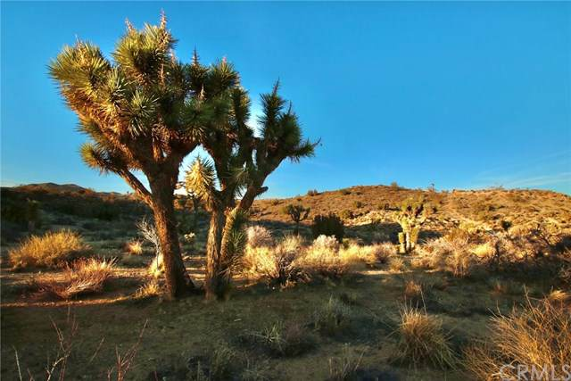 0 Onaga/Navajo, Yucca Valley, CA 92284 (#JT20027277) :: RE/MAX Empire Properties
