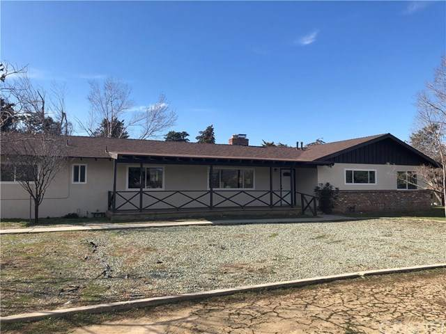 40139 90th Street W, Leona Valley, CA 93551 (#SR20028137) :: The Brad Korb Real Estate Group