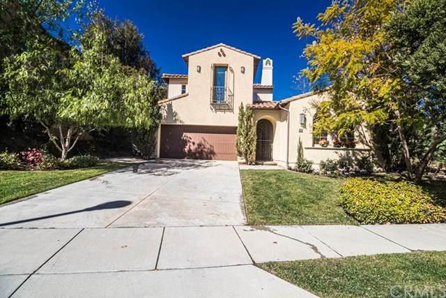 69 Via Regalo, San Clemente, CA 92673 (#SW20028468) :: Allison James Estates and Homes