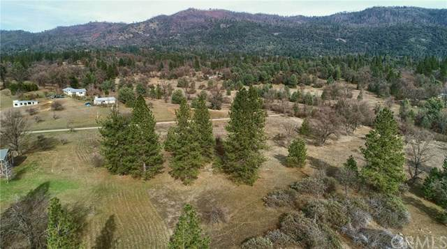 3135 Triangle Road, Mariposa, CA 95338 (#FR20028129) :: Allison James Estates and Homes