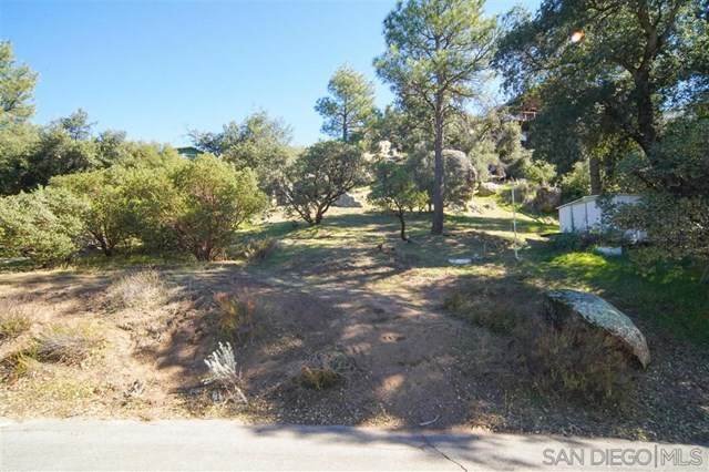 0 Pine Blvd, Pine Valley, CA 91962 (#200006625) :: RE/MAX Masters