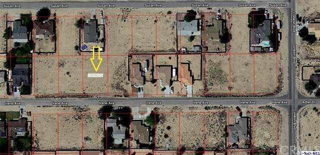 0 Irene Avenue, California City, CA 93505 (#320000514) :: Berkshire Hathaway Home Services California Properties