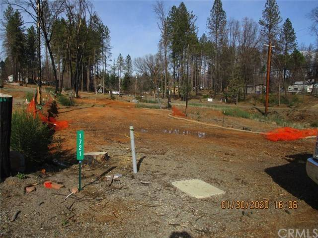 1721 Timber Walk Way - Photo 1