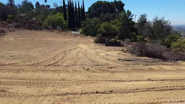 0 Rainbow Heights Road, Fallbrook, CA 92028 (#SW20029336) :: Case Realty Group